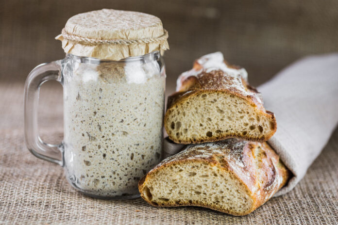 Troubleshoots With Your Sourdough Starter And How to Fix It